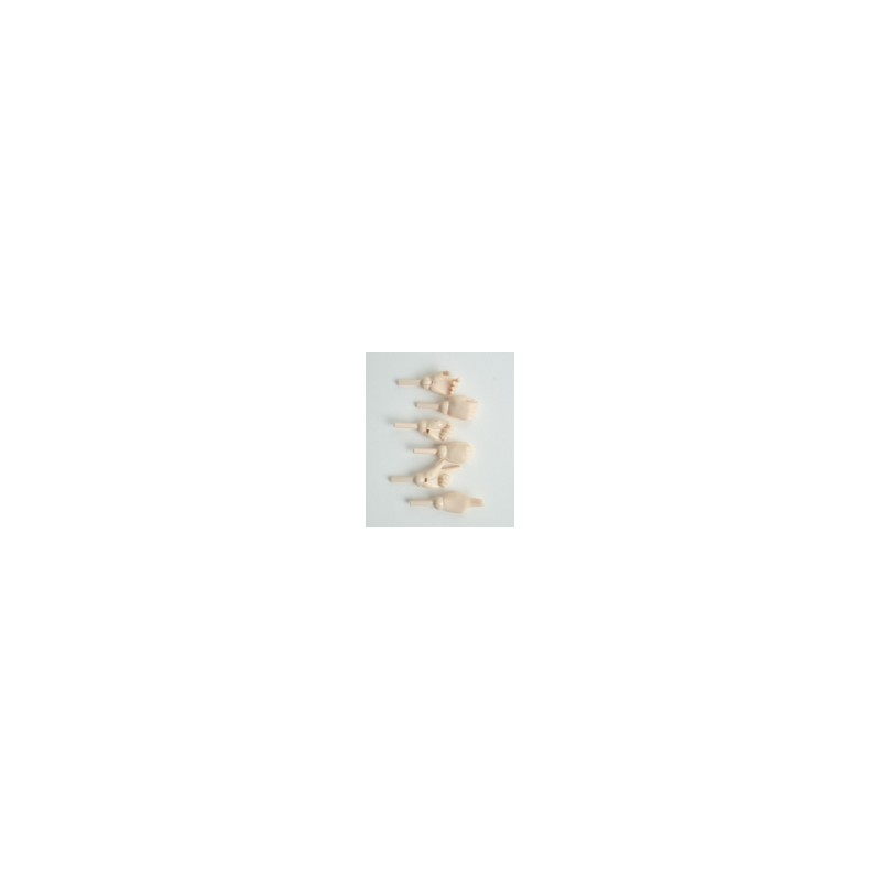 AZONE Akibahara Label Shop Limited Edition Special